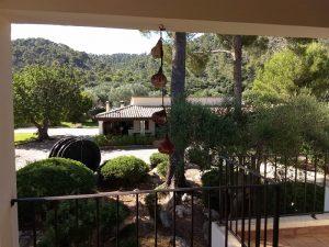 Blick von der Terrasse in den Garten der Finca