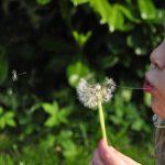 Lotte – Kleines Wunder der Stiftung AKM