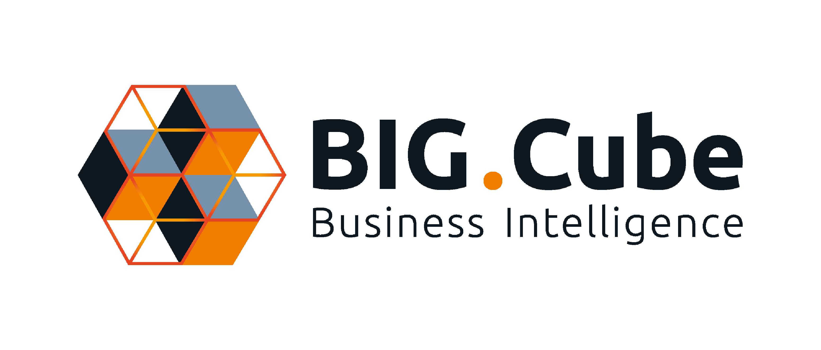 bigcube-logo